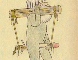 Frederic Fleury Passion Bois Couv